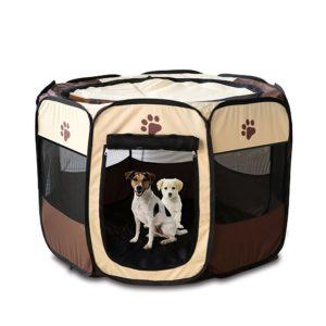 Hundebox kaufen