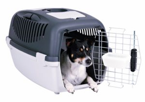 Hundebox-flugbox